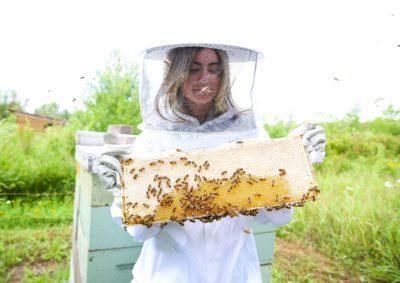 BeeKeeper harvesting Bee's